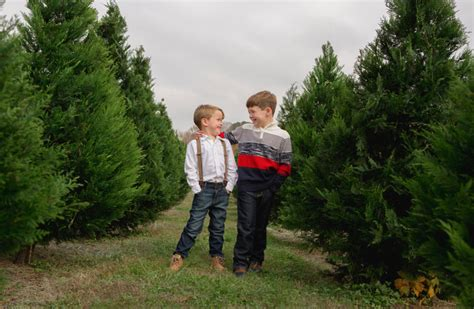 christmas 20161112 190358 christmas tree farmsr me for