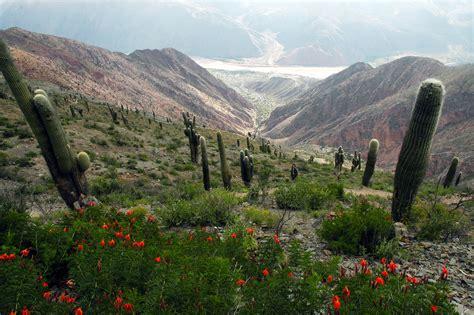 imagenes paisajes de jujuy el noroeste argentino en fotos taringa
