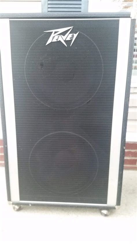 for sale trade peavey 2x15 with black widow speakers