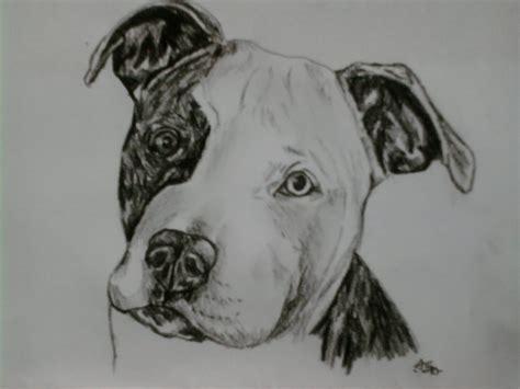 pitbull puppy portrait by sugarskull tattoos on deviantart