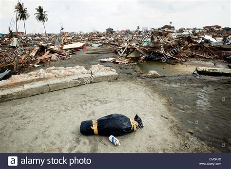 earthquake indian ocean a small body wrapped in a bag after the indian ocean