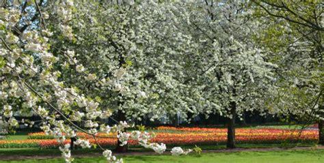 Britzer Garten Location by Britzer Garten Aktivit 228 Ten Im Bei Sch 246 Nem Wetter