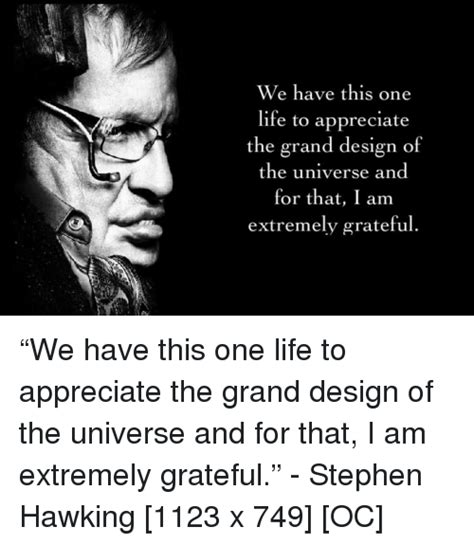 grand design meaning of life we have this one life to appreciate the grand design of