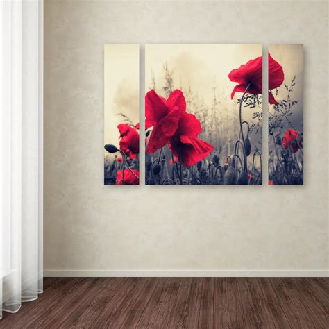 by philippe sainte laudy red for love trademark fine art 24 in x 32 in quot red for love quot by