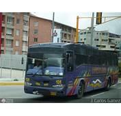Expresos Alianza 131 Por J Carlos G&225mez  M&233rida