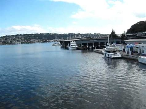 lake union paddle boat queen of seattle paddle boat ride in lake union youtube