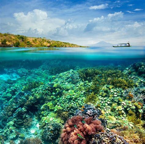 gili meno indonesia gili meno island indonesia one way ticket to awesome