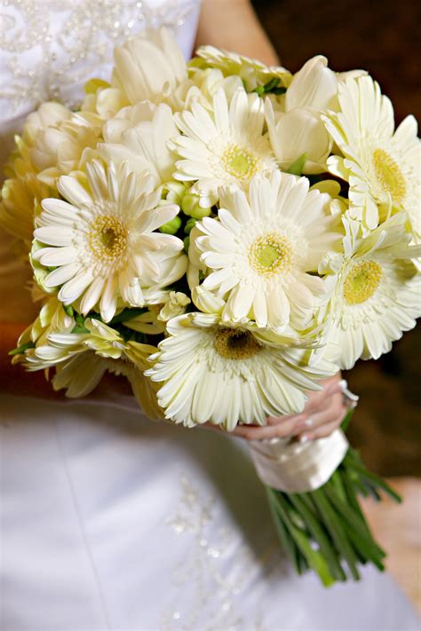 Wedding Bouquet Of Daisies by Wedding Flowers Wedding Flowers Bouquets Daisies