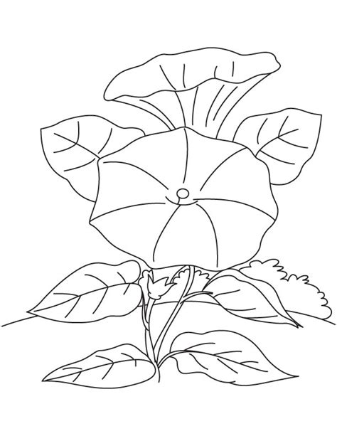 coloring pages field of flowers climbing flower field coloring page free