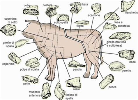 come cucinare il magatello di manzo 14 best i tagli della carne bovina images on