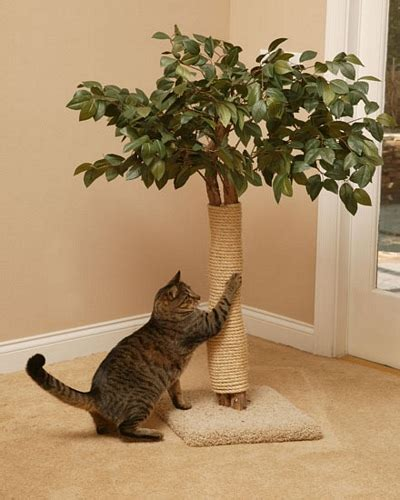 real tree or fake foe cats custom made cat tree houses by pet tree houses orlando pet services