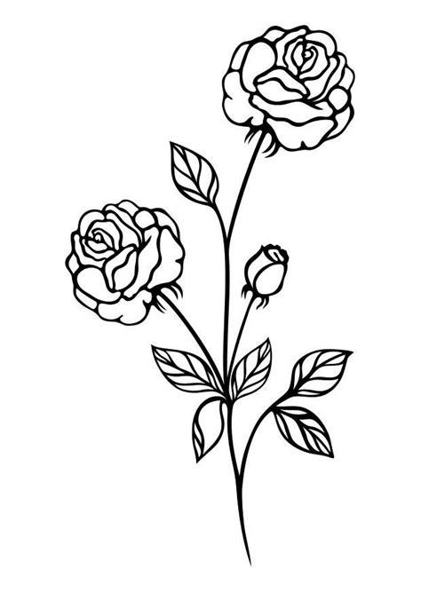 imagenes y fotos dibujos de flores para colorear parte 2 dibujo para colorear rosas img 29722