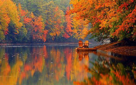 fall autumn autumn foliage and quotes quotesgram