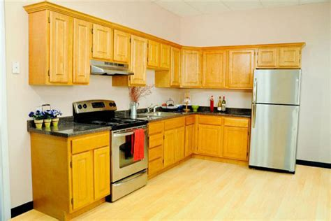 Kitchen Designs For L Shaped Kitchens Small L Shaped Kitchen Cabinet Design Afreakatheart