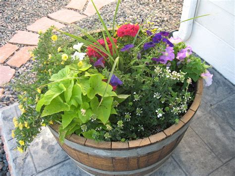 big ole whiskey barrel planter full of beautiful flowers
