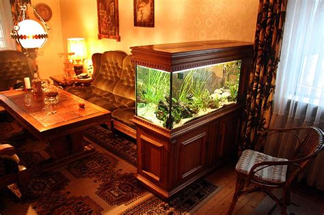 fish tank in living room images
