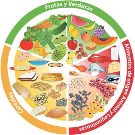 imagenes para colorear plato del buen comer dibujo del plato de buen comer para colorear imagui