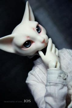 jointed doll cat feathered friend with pipos bjd dollies
