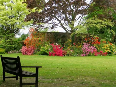 The Cottage Garden Society by Plant Sales Open Gardens The Cottage Garden Society