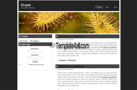 theme drupal professional free brown pink news blog drupal theme template