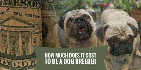 how much do cost for dogs how much does it cost to be a breeder