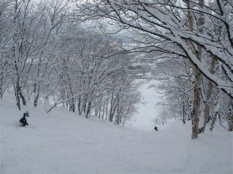 imagenes de invierno muy frio niseko principal centro de esqu 237 en jap 243 n