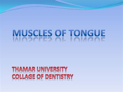 anatomy of the tongue slideshare muscles of tongue