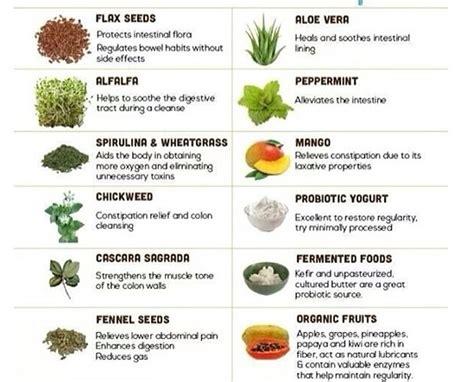 Colon Detox Program by Detox And Cleanse Colon Naturally Healthy Colon Diet