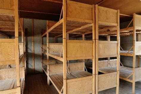 concentration c bunk beds concentration c beds www imgkid the image kid