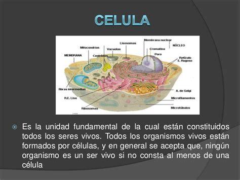 componentes de la materia viva componentes de la materia viva
