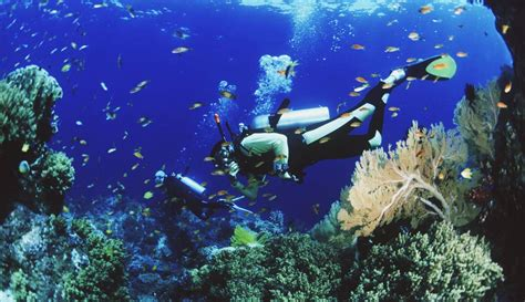 best diving places the best places for scuba diving in thailand traveling