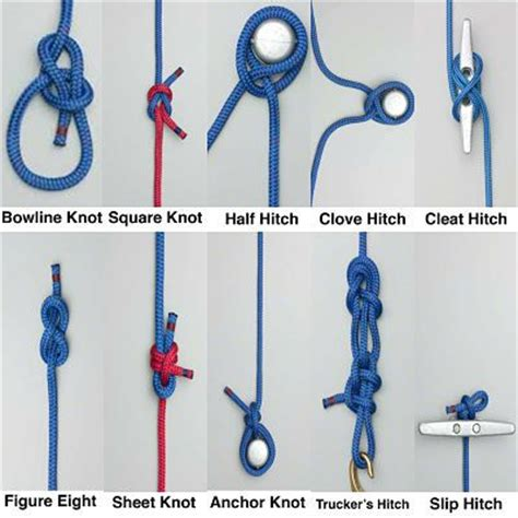 boat licence knots 1000 images about boatinf on pinterest boating hand
