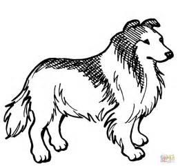 disegno di cane da pastore scozzese a pelo lungo da