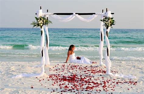 Wedding Venues Ta Fl by 81 Best Of Wedding Ideas Images On