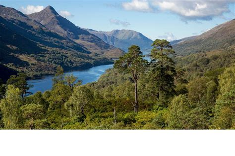 Scotland Search Scottish Highlands Holidays Things To Do Visitscotland