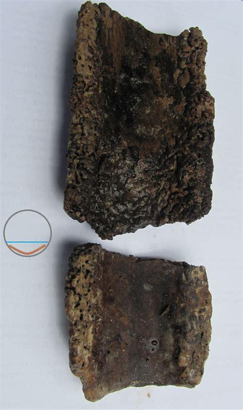 urinstein entfernen im rohr 5769 kann solche urinstein ablagerungen s foto