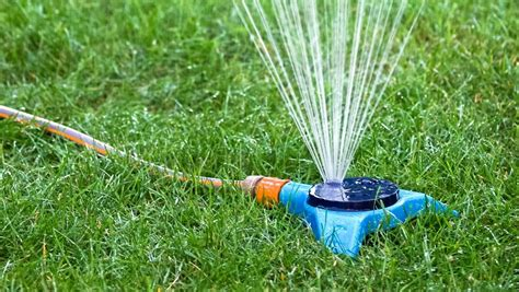 Best Time To Water Vegetable Garden by Watering Your Garden You Been Doing It Wrong This