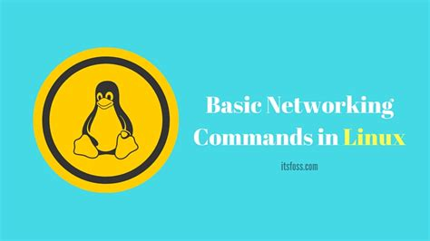 tutorial linux networking basic linux networking commands you should know