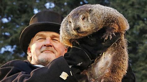 groundhog day 2018 what is groundhog day find out the date facts about the