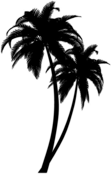 tree tattoo png tattoo but just one palm tree with quot the sky is the limit