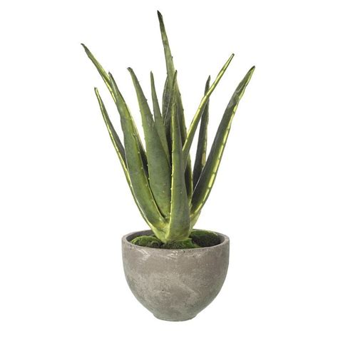 Aloe Vera Jumbo potted faux succulent flowers faux house plants the farthing