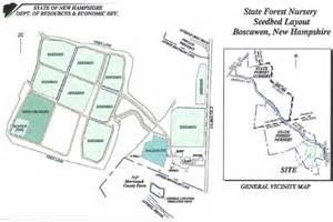 layout of forest nursery nh nursery history