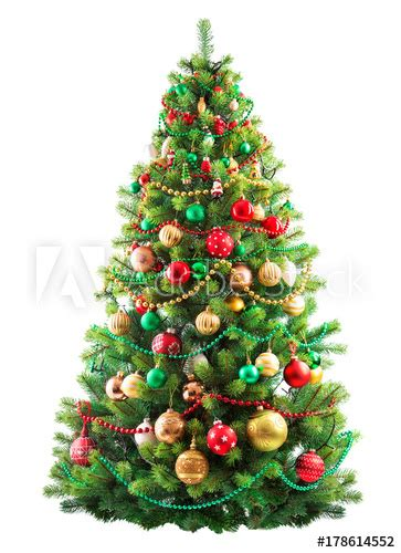 christmas trees to buy near us beautiful tree isolated on white background buy this stock photo and explore similar