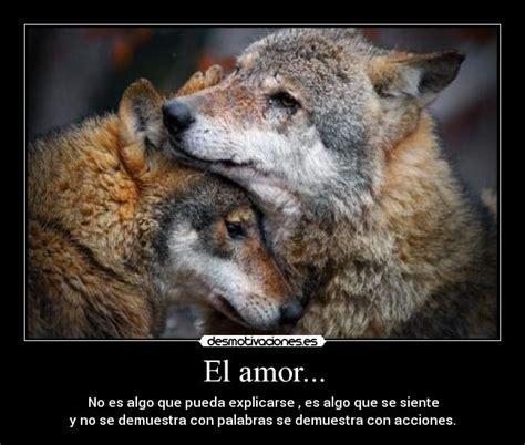 imagenes con frases de amor con lobos el amor desmotivaciones