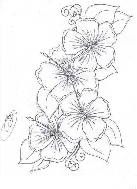 free coloring pictures of tropical flowers beautiful flower coloring pages free hibiscus flower