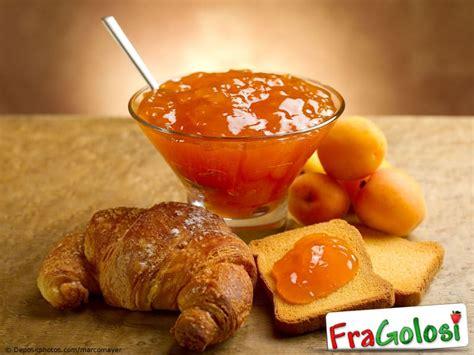 dispensa dizionario marmellata di albicocche ricetta di fragolosi it