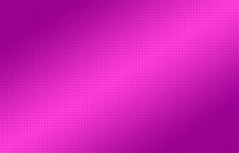 wallpaper pink and violet pink full hd wallpaper and background image 2500x1600