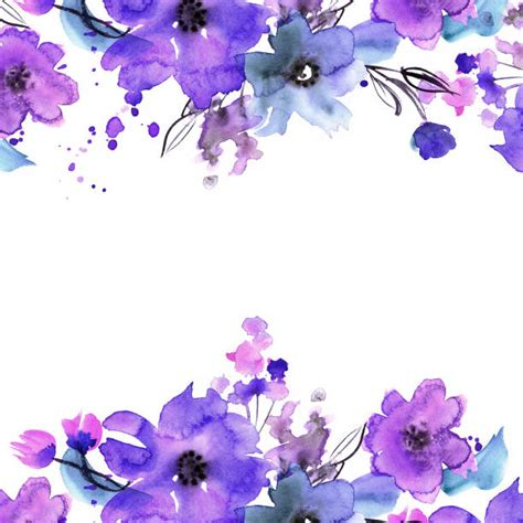 violet flower illustrations royalty  vector graphics