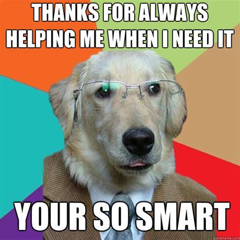 Smartass Memes - smart dog meme memes