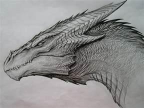 dragon sketch by tatianamakeeva deviantart com on